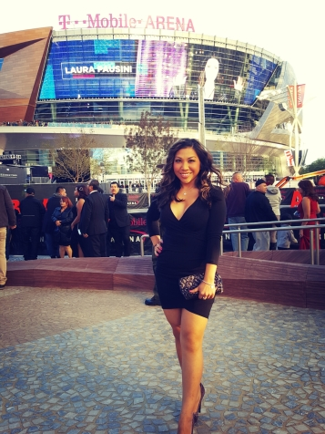17th Annual Latin Grammy Las Vegas, Nov. 2016